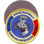 Badge Police 13