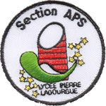 Badge Section APS