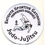 Badge Judo Gatinais