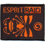 Badge Esprit Raid