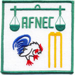 Badge AFNEC